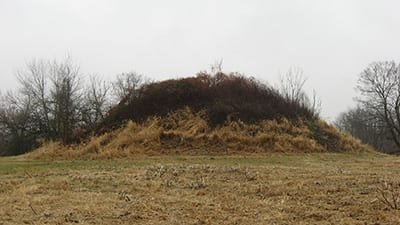The Dixon Mound in Homer, Ohio.